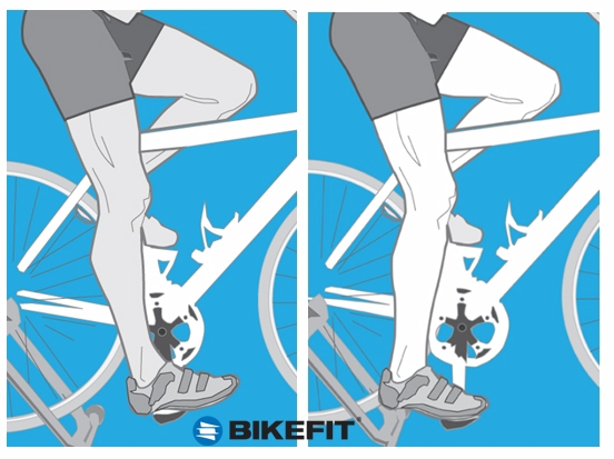 How To Fit A Road Bicycle Bikefit